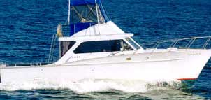 Annapolis Sport Fishing Charters