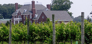 Photo of a large brick house and vineyard