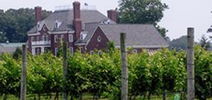 Photo Credit: Bordeleau Vineyards and Winery
