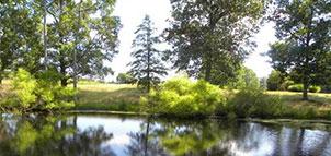 Pond at Breton Bay Golf Club