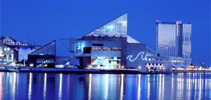 Photo Credit: National Aquarium in Baltimore