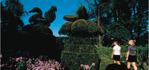 Photo Credit: Ladew Topiary Gardens