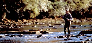 Fly-fishing on Patuxent River