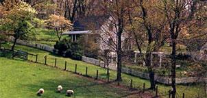 Pleasant Springs Farm