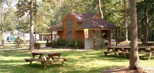 Pine Tree Campground