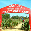 Welcome Sign at Forrest Hall Farm Crazy Corn Maze
