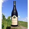 Bottle of Hambleton Creek Wine in the vineyard