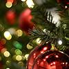 Image of Christmas Tree Decorations