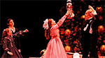 Maryland Regional Ballet's Nutcracker