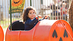 Riding the pumpkin express