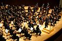UMD Symphony Orchestra photo
