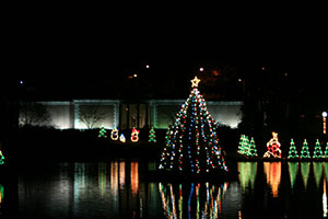 View of City Park Tree Lighting across Lake