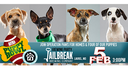 Puppy Bowl View Party: Jailbreak Brewery & OPH