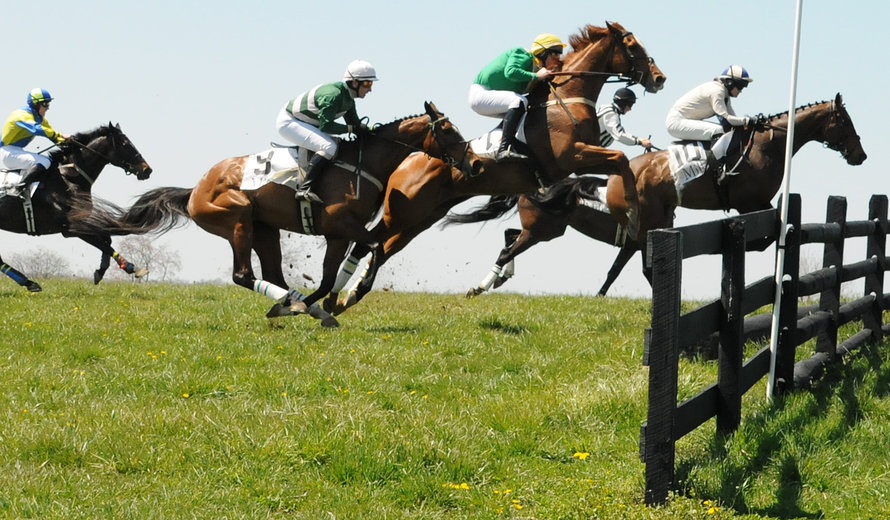 My Lady's Manor Steeplechase Races