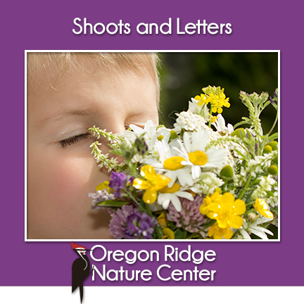 Shoots & Letters flyer