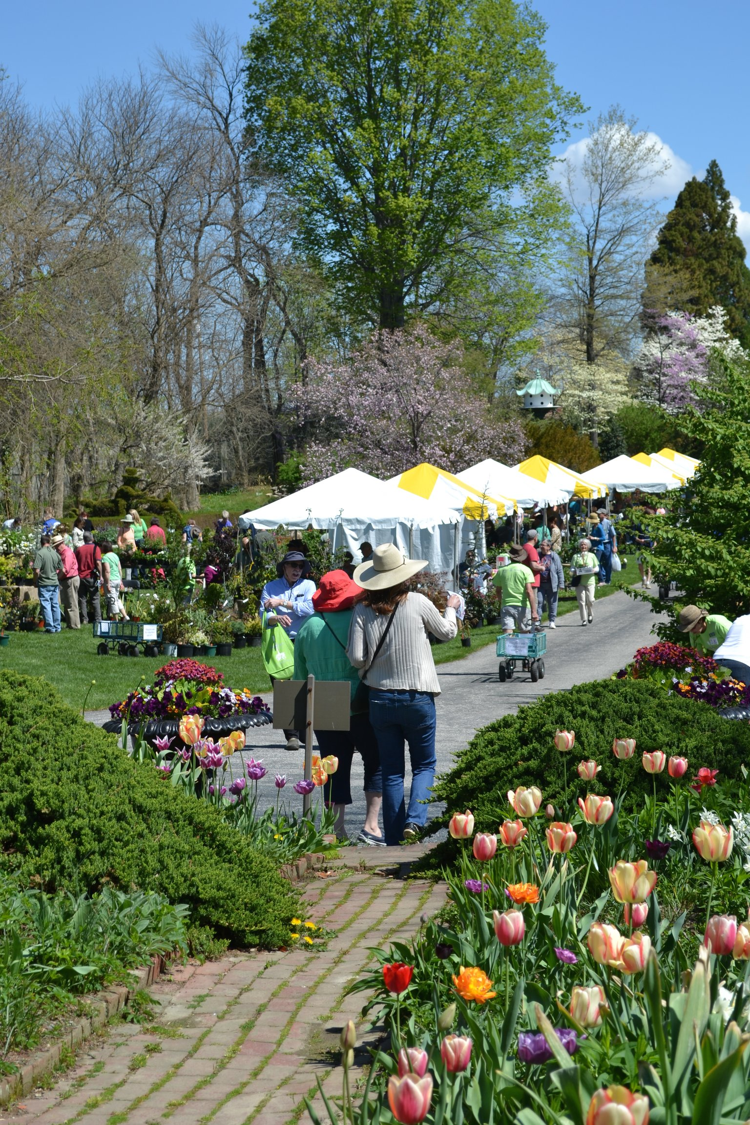 Garden Festival at Ladew Gardens