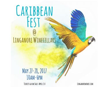 Caribbean Wine Festival flyer