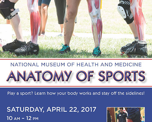 Flyer promoting NMHM Anatomy of Sports
