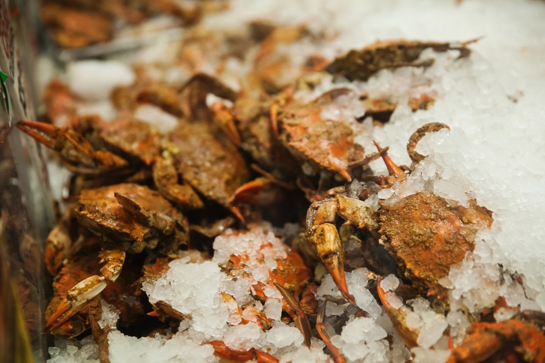 Crabs at Faidley's Seafood
