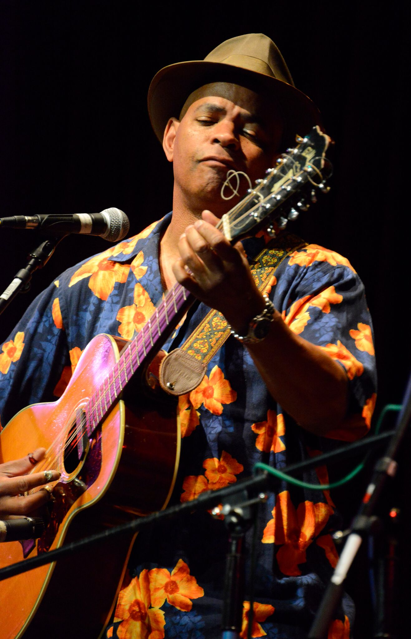 Guy Davis performing on stage