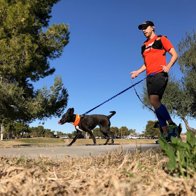 fun run photo showing a man and his dog