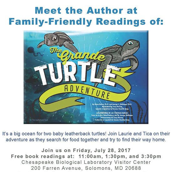 The Grande Turtle Adventure poster