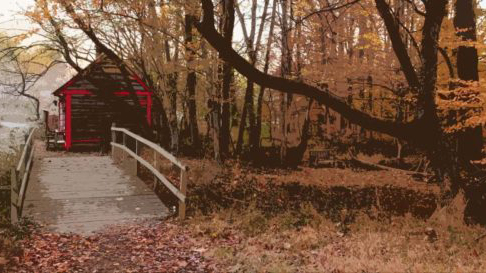 Photo showing Fall Hiking Trail