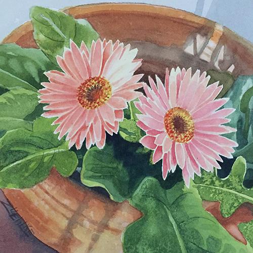 Gerber Light Watercolor