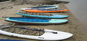 Shore Pedal and Paddle
