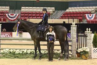 Horse riding champion