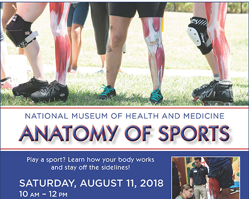 Anatomy of Sports flyer