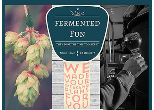 Fermented Fun logo