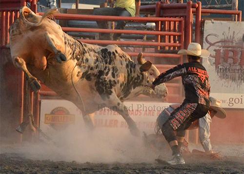 Top 30 Bullriding Finals