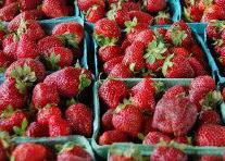 Strawberries for the Festival