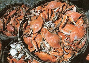 Baskets of steamed crabs