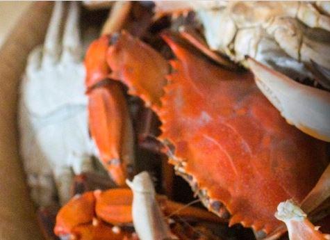 Annapolis Crab Feast
