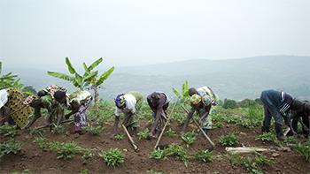 Mama Rwanda still photo
