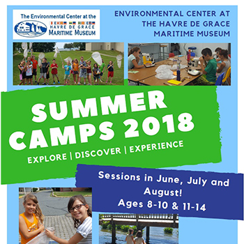 2018 Summer Camps poster