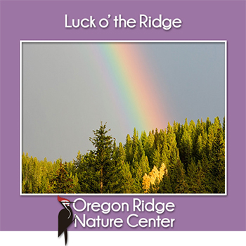 Luck o' the Ridge