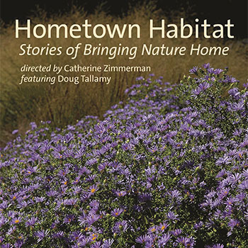 Hometown Habitat Poster with Lavender Field