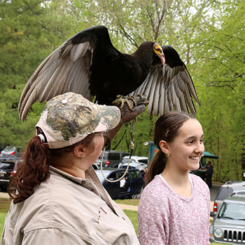 Bird Handler Shows a Raptor to Park Goer