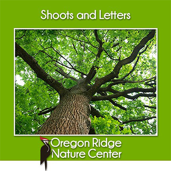 Shoots and Letters - Trees Poster