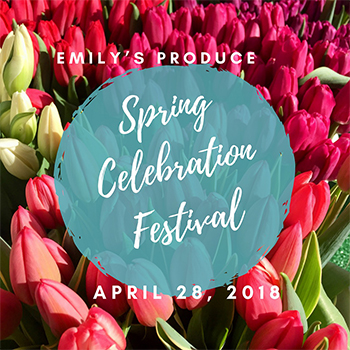 Spring Celebration Festival Logo