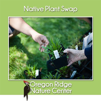Native Plant Swap Poster