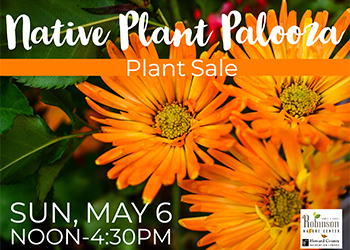 Native Plant Palooza