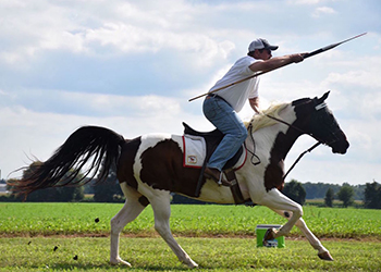 Rider at Jousting Tournament & Horse Show