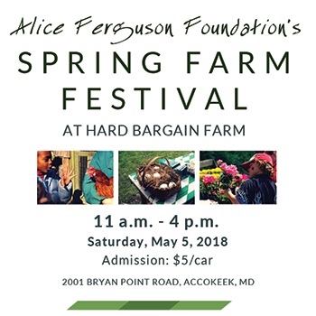 Spring Farm Festival at Hard Bargain Farm