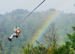 A Person Enjoying a Ride on the Zipline
