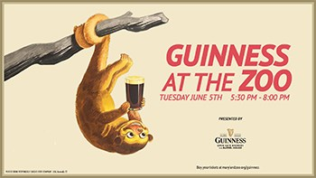 Guinness at the Zoo Poster