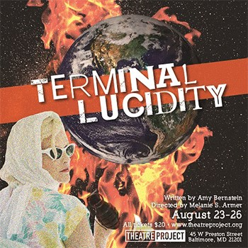 Terminal Lucidity Poster